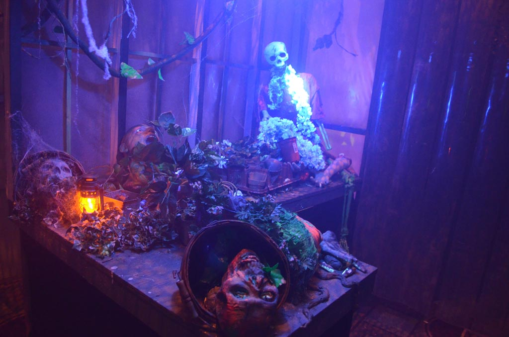 Spooky Hollows is one of nine stand-alone mini haunt experiences in the Hall of Shadows.