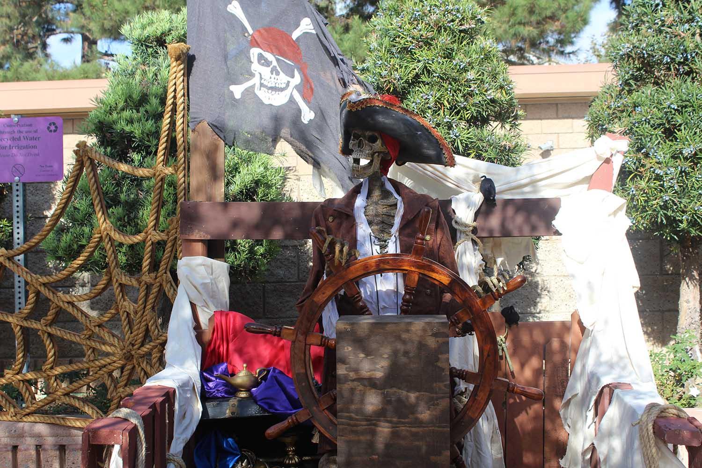 Pirate skeleton replica with pirate decor